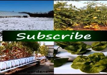 راهکارهای جدید در کشاورزی