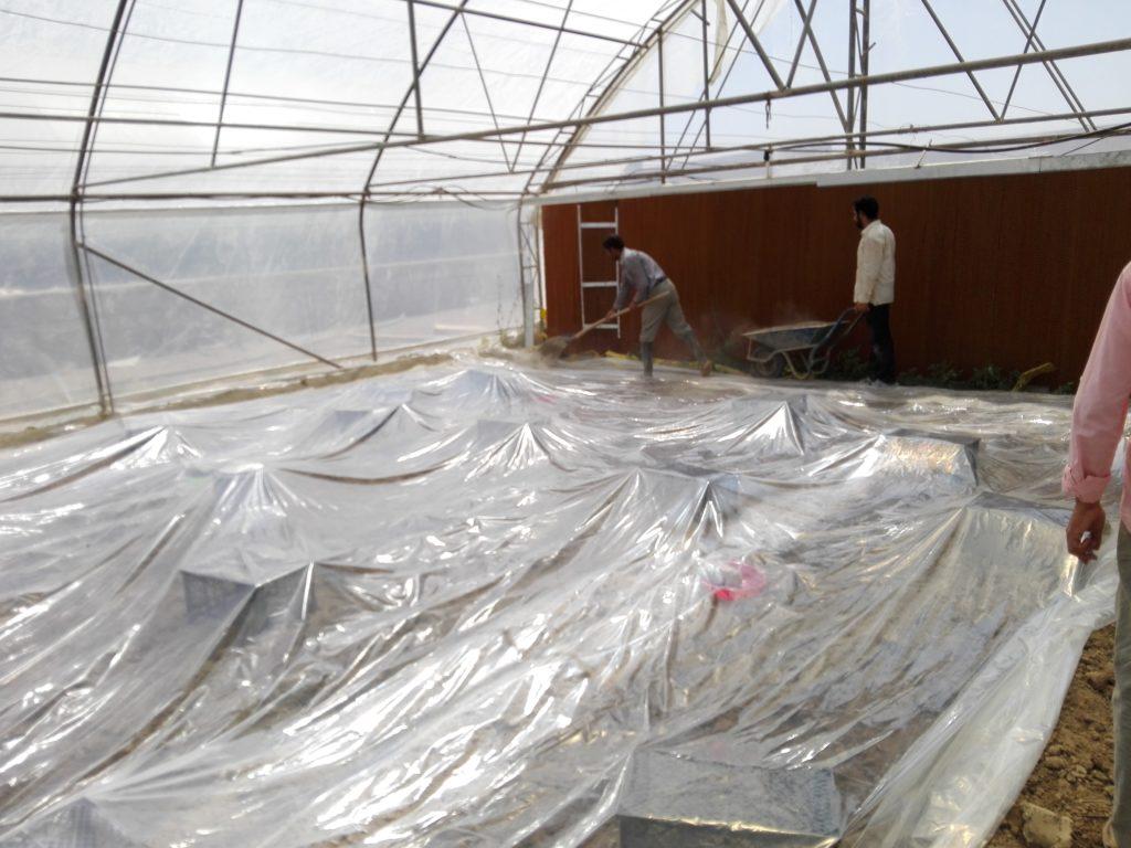 پلاستیک کشی روی خاک برای ضدعفونی خاک متیل برومیاد