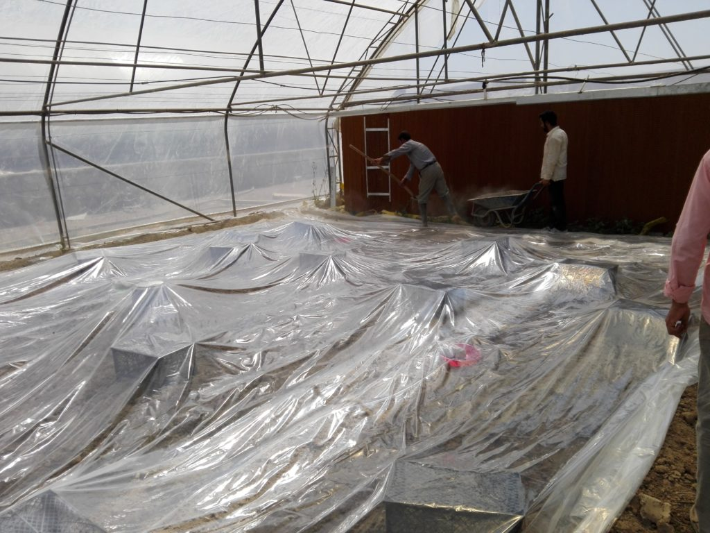 پلاستیک کشی روی خاک جهت ضدعفونی خاک متیل برومیاد