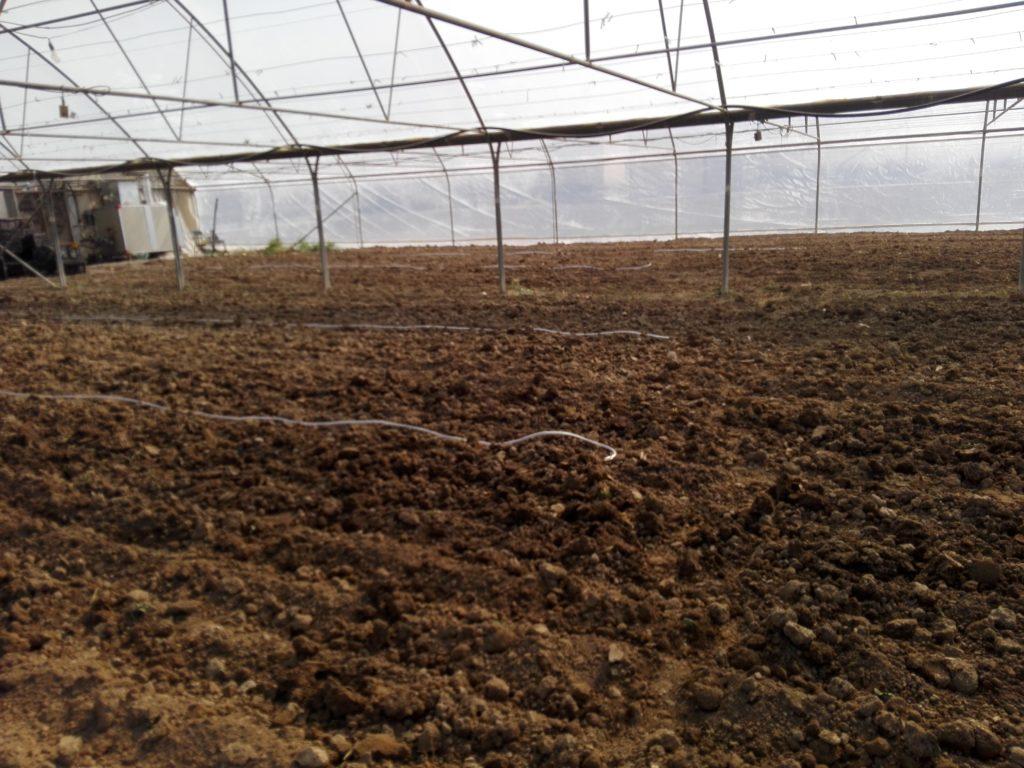 هوادهی گلخانه بعد از ضد عفونی خاک با متیل بروماید